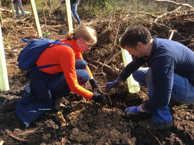 26.10.2019 100 freiwillige Helfer pflanzen auf dem Meißner